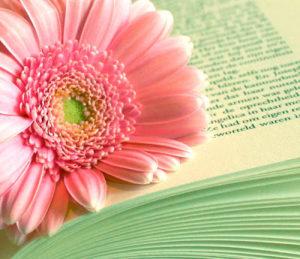 il dono della lettura