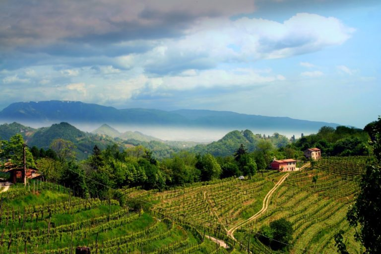 Paesaggi letterari del Veneto